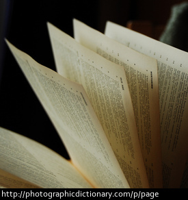 Photo of pages from a book