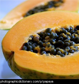 Photo of pawpaw or papaya