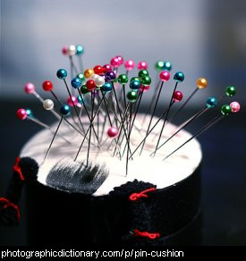 Photo of a pincushion