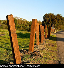 Photo of fence posts
