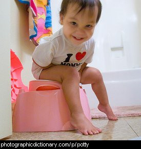 Photo of a toddler sitting on a potty