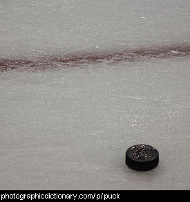 Photo of a hockey puck