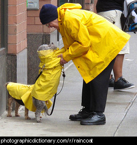 Photo of a man and a dog wearing raincoats