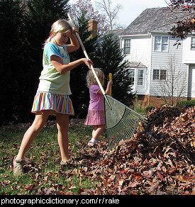 Photo of someone raking leaves