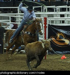 Photo of a rodeo