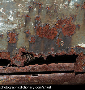 Photo of rust