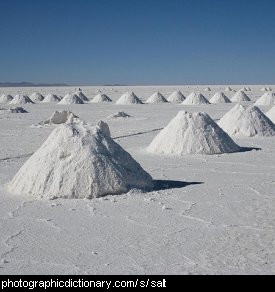 Photo of salt mounds.