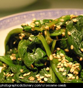 Photo of sesame seeds