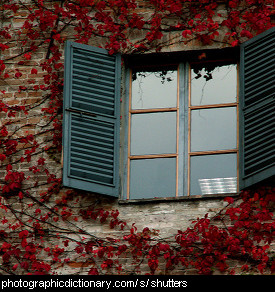 Photo of window shutters