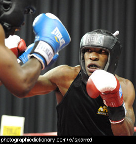 Photo of boxers sparring