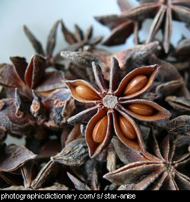 Photo of star anise seeds