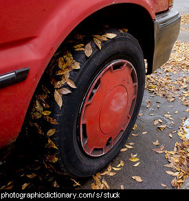 Photo of leaves stuck to a car tire