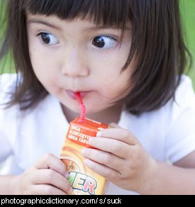 Photo of a little girl sucking through a straw