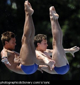 Photo of synchronized divers