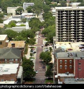 Photo of Tallahassee, Florida