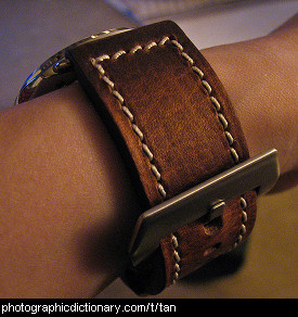 Photo of a tan leather watch strap