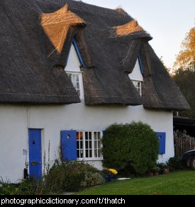 Photo of a thatched cottage