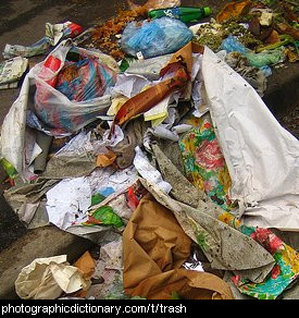 Photo of some trash