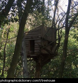 Photo of a treehouse