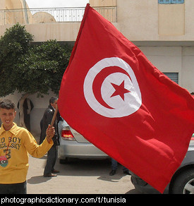 Photo of the Tunisian flag