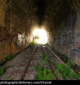 Photo of a tunnel