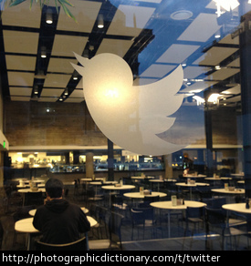 Photo of the twitter logo
