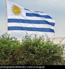 Photo of the Uruguay flag