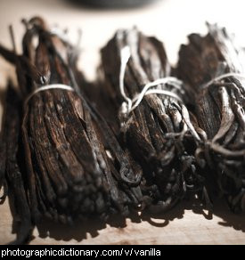Photo of vanilla pods