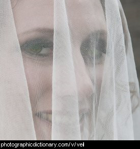 Photo of a woman wearing a veil