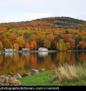 Photo of fall foliage in Vermont