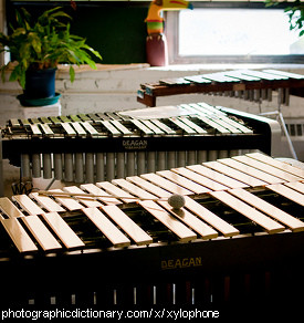 Photo of a xylophone.