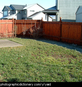 Photo of a yard
