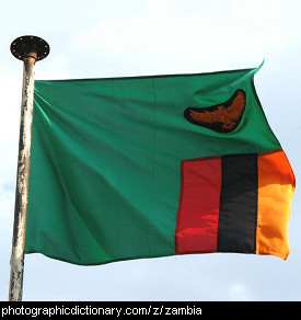 Photo of the Zambian flag
