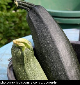 Photo of courgettes